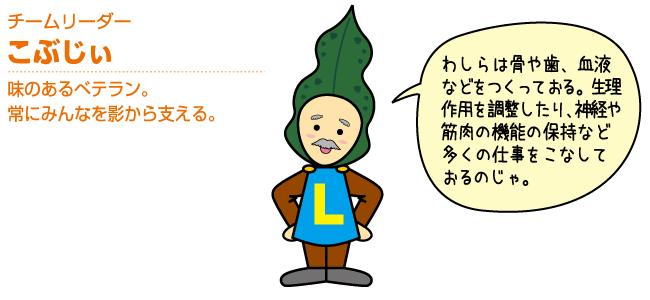 チームリーダー こぶじぃ