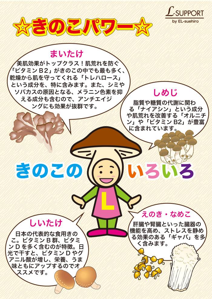 L_poster3